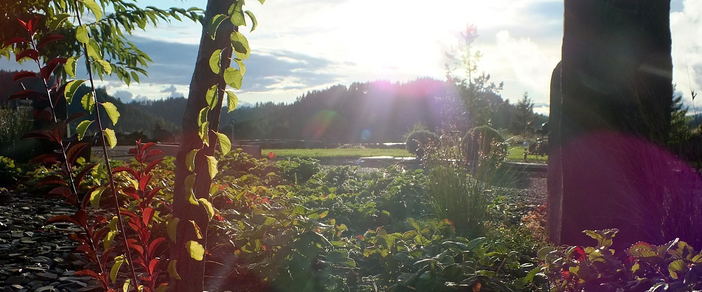 In Spokane Wa Visit Circle M Landscape Supplies Blueslate Woodstone